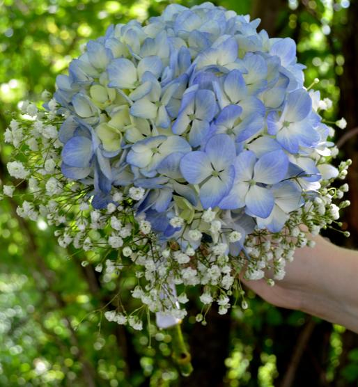Blue Hydrangea bridesmaid