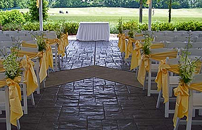 wedding ceremony yellow decorations