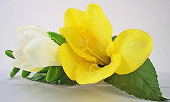 yellow white freesia boutonniere