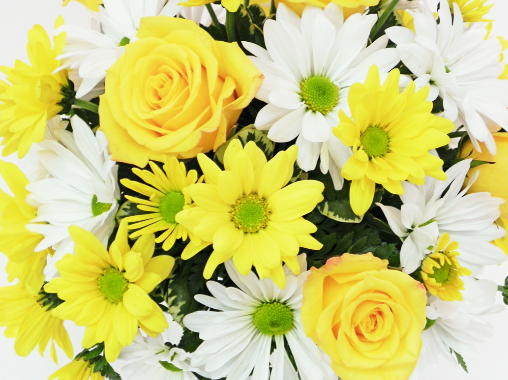 Yellow and white daisy rose bridal
