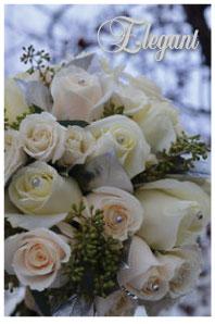 Elegant Roses Bridal Fonts